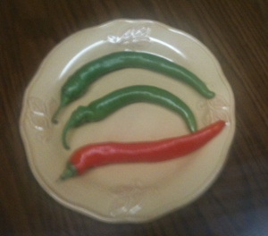 Hot Peppers from our garden